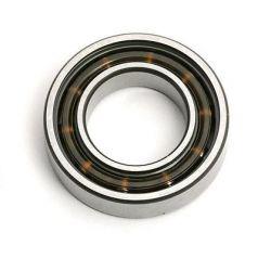 TE016A1 Rear Bearing
